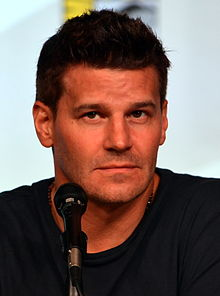 David Boreanaz Quotes