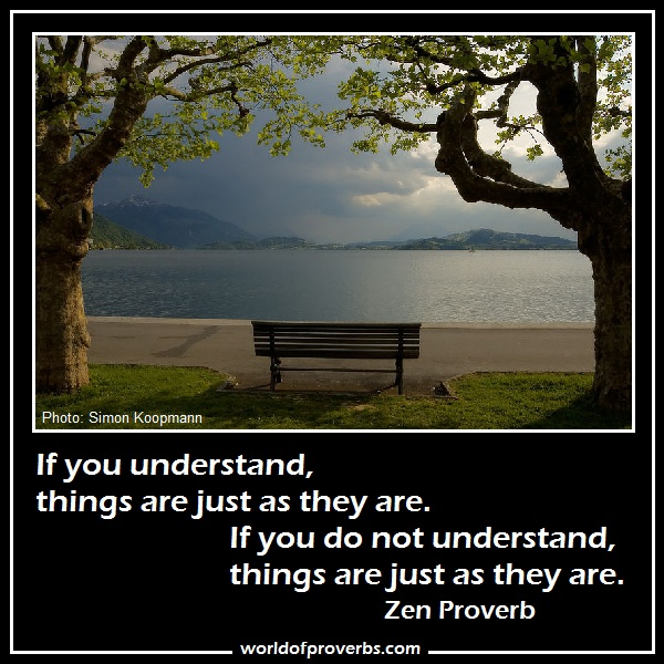 Zen Quotes And Proverbs Quotesgram