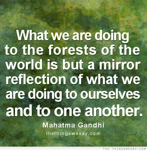 Reflection Quotes About Life: Quotes About Mirrors And Reflections. QuotesGram