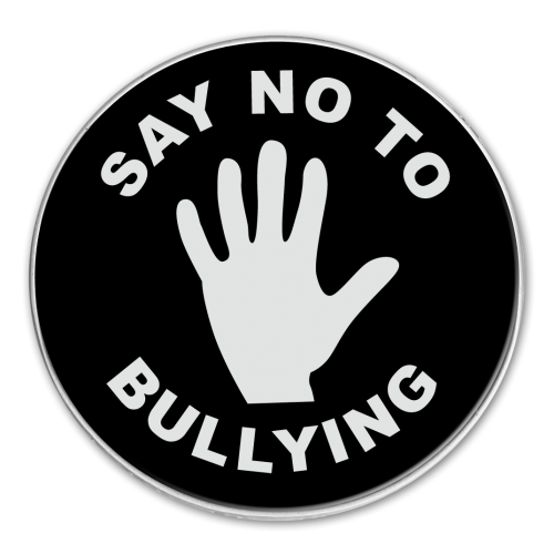 say no to bullying essay Bullying argumentative essay - abuse essay example bullying is in no way shape or form acceptable and nothing anyone can say will downplay bullying because it affects everyone.