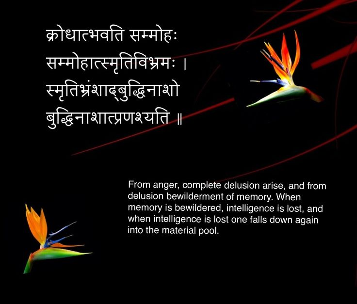 Famous Sanskrit Quotes With English Translation. QuotesGram