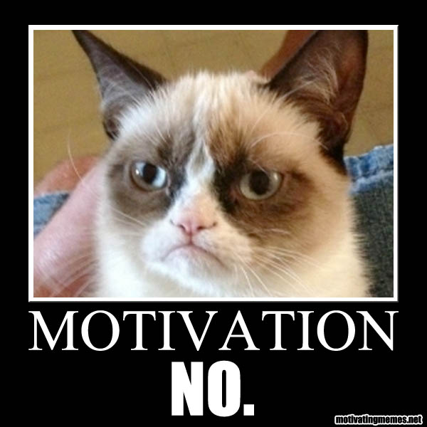Humor Inspirational Quotes: Funny Lack Of Motivation Quotes. QuotesGram