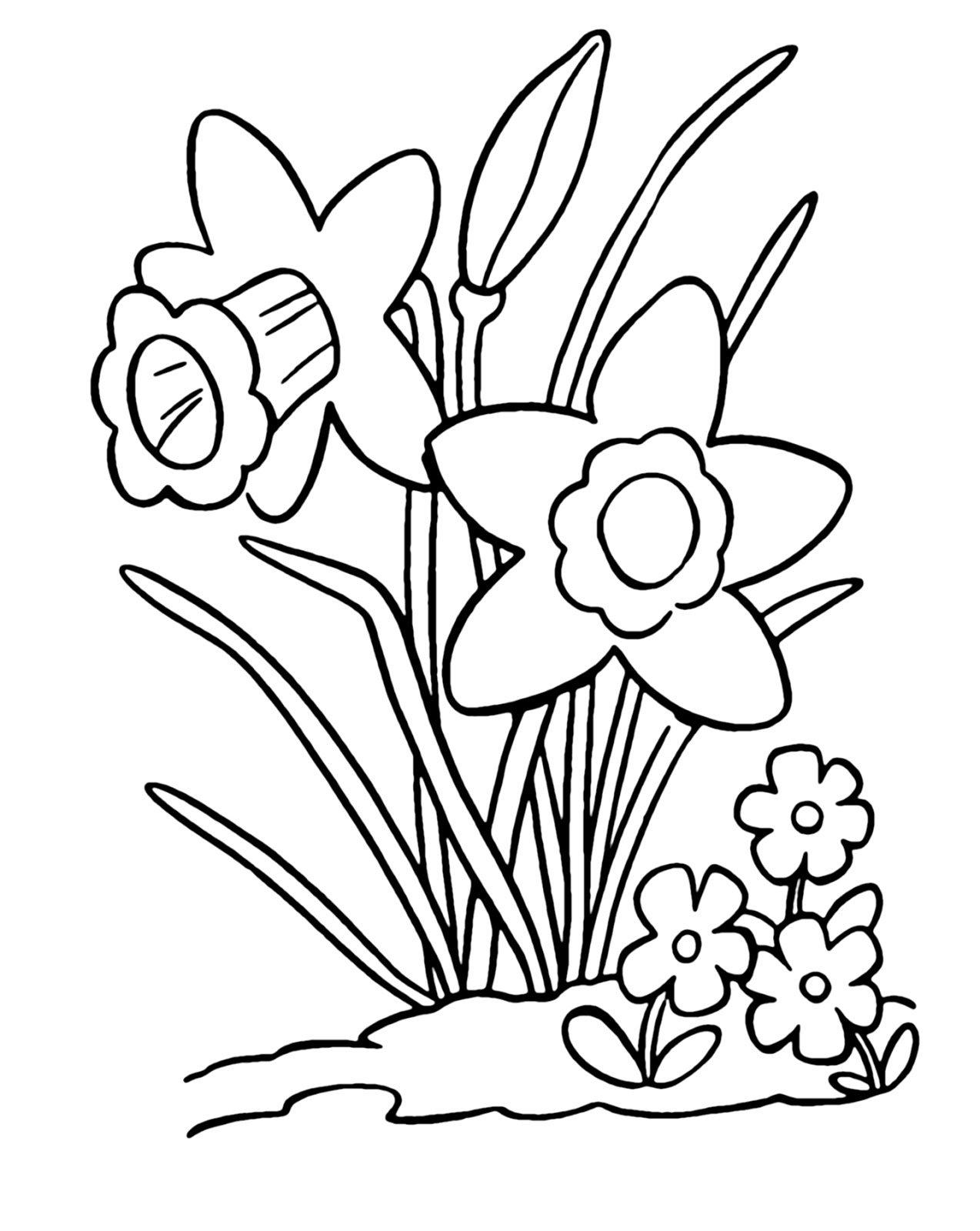 White Daffodils Clip Art Cliparts