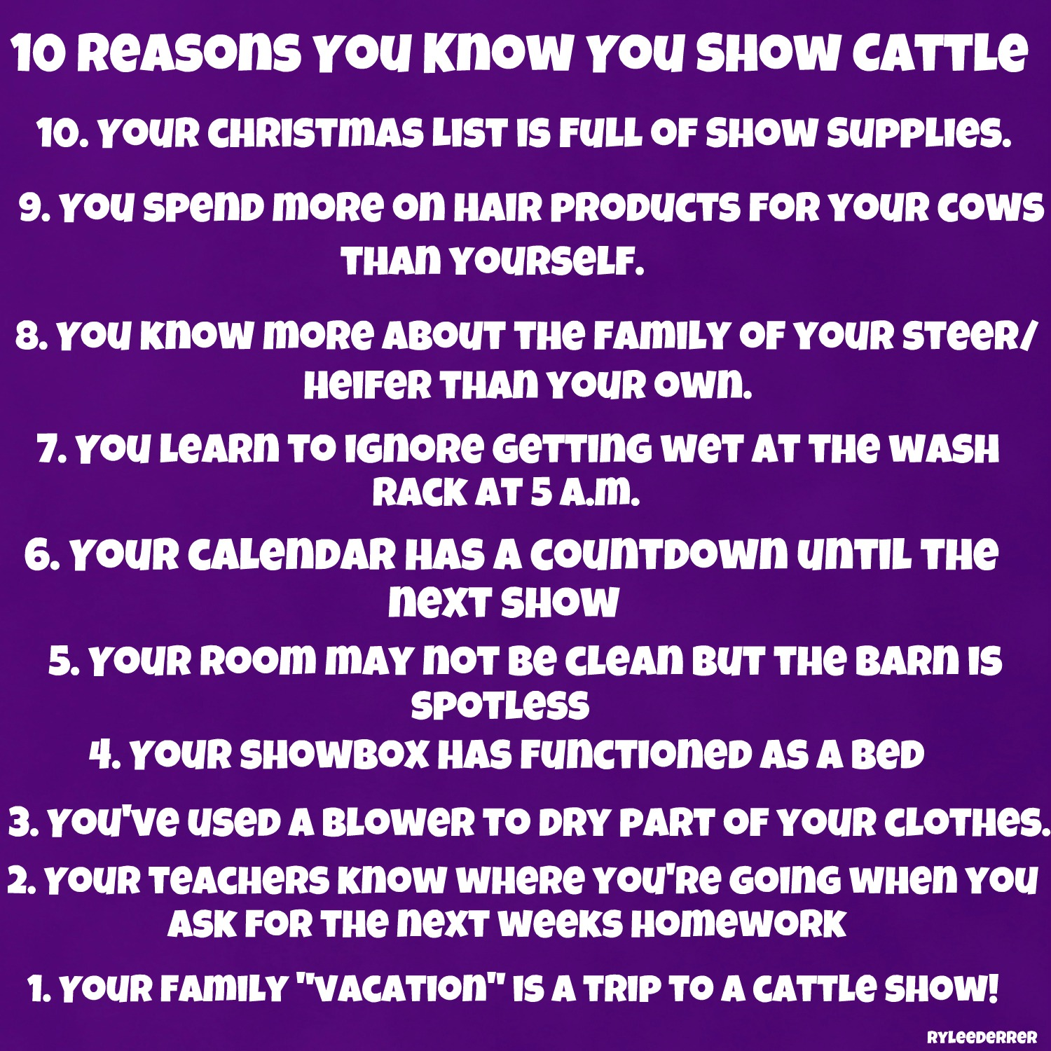 4 h show cattle guide