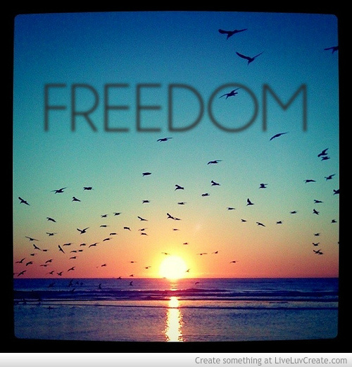 true freedom peace of mind What does freedom and feeling free really mean though  i can choose my  actions on a day-to-day basis, and i am truly so grateful for all  freedom in mind.