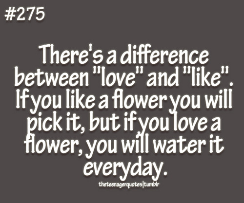 Difference Between Love And In Love Quotes. QuotesGram