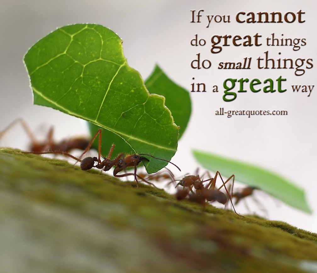Small Great Things Quote: Great Small Quotes. QuotesGram