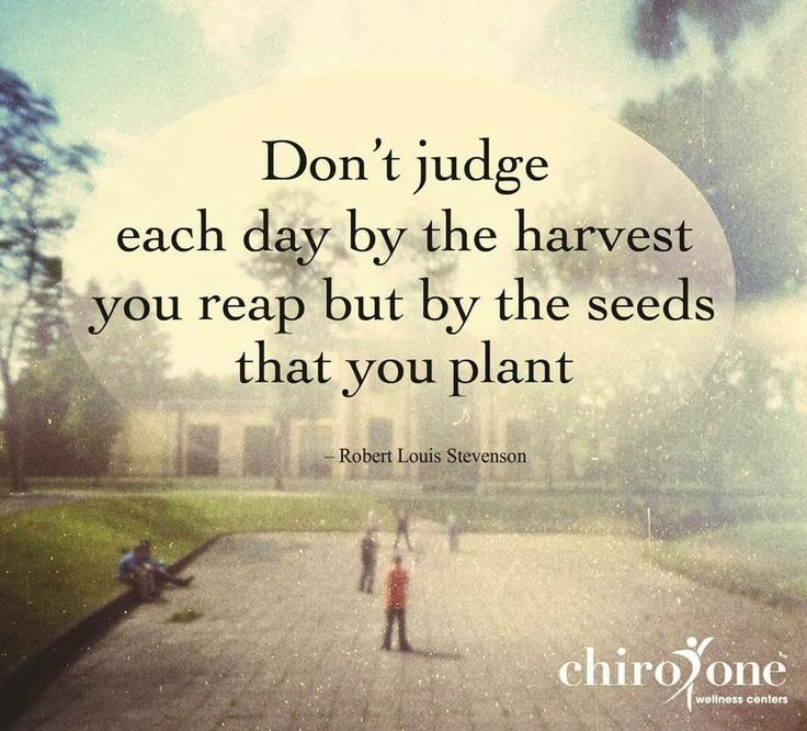 Planting Seeds Bible Picture Quotes. QuotesGram