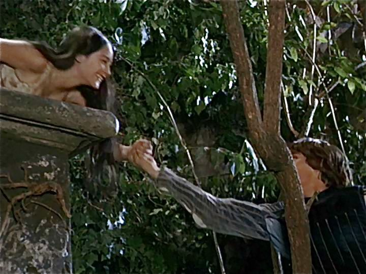 That Which We Call a Name: The Balcony Scene in Romeo and Juliet - Essay