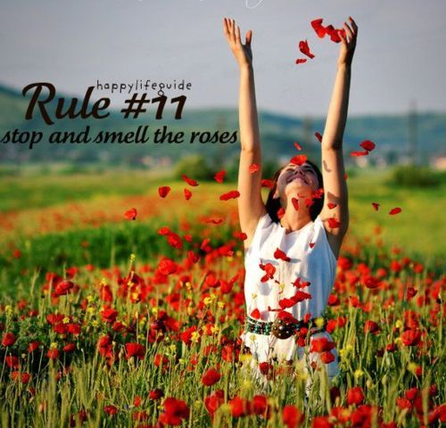 Smell Good Quotes: Stop And Smell The Roses Quotes. QuotesGram