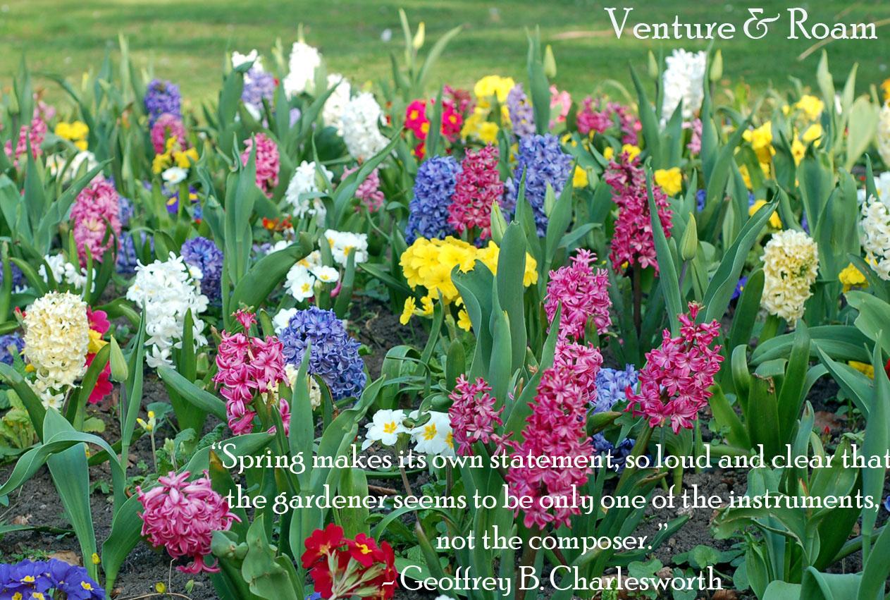 Spring Quotes: Spring Quotes Flowers. QuotesGram