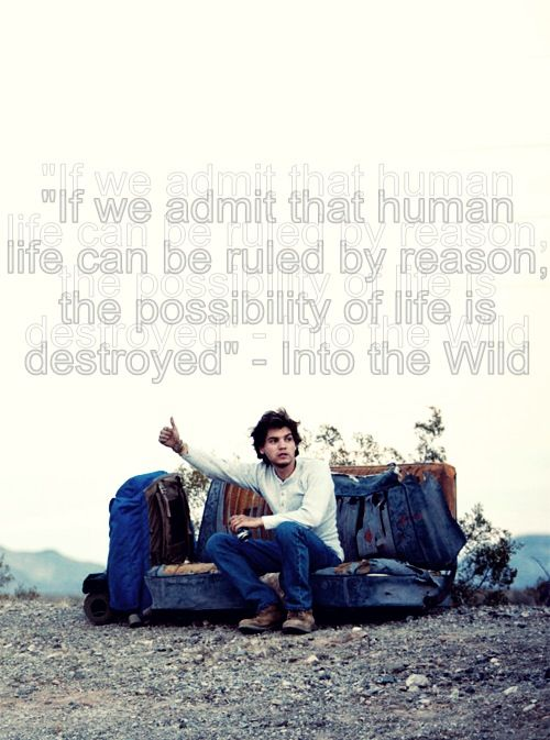 into the wild analysis Sean penn finds a kindred spirit in the hero of into the wild.