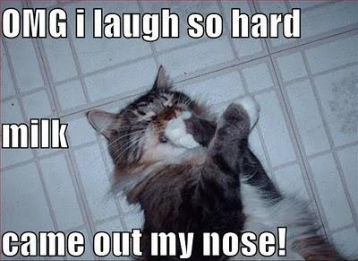 Funny Pictures With Captions Clean With Animals Clean Funny Ani...