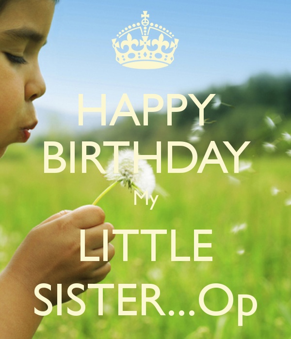 Cool Happy Birthday Little Sister Quotes Quotesgram Funny Birthday Cards Online Fluifree Goldxyz