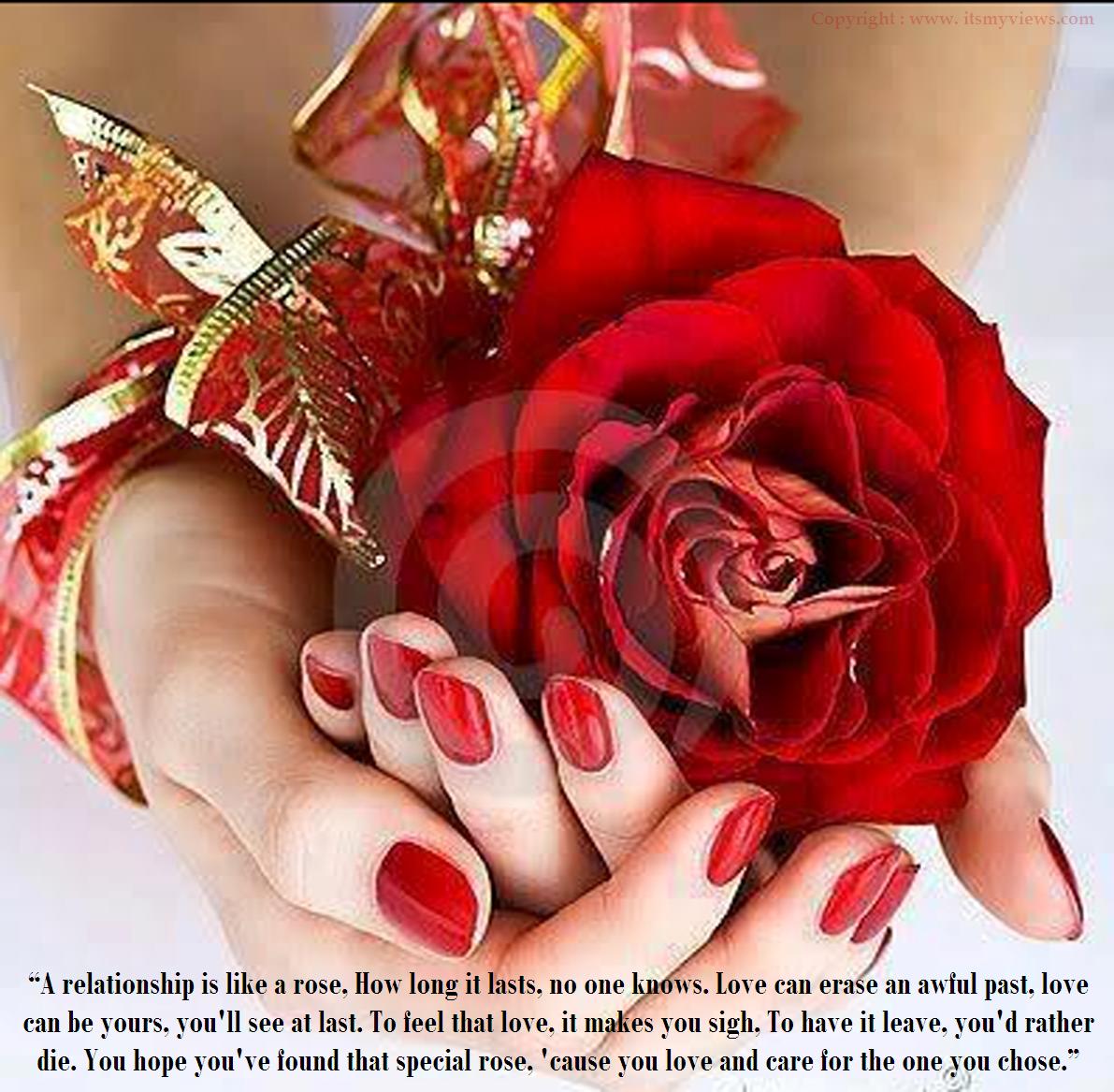 Valentines Roses With Quotes Quotesgram