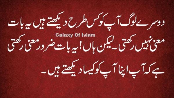 sufi urdu quotes about love quotesgram