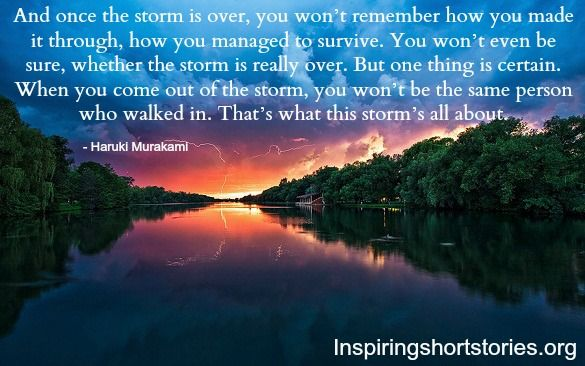 Weathering The Storms Of Life Quotes. QuotesGram
