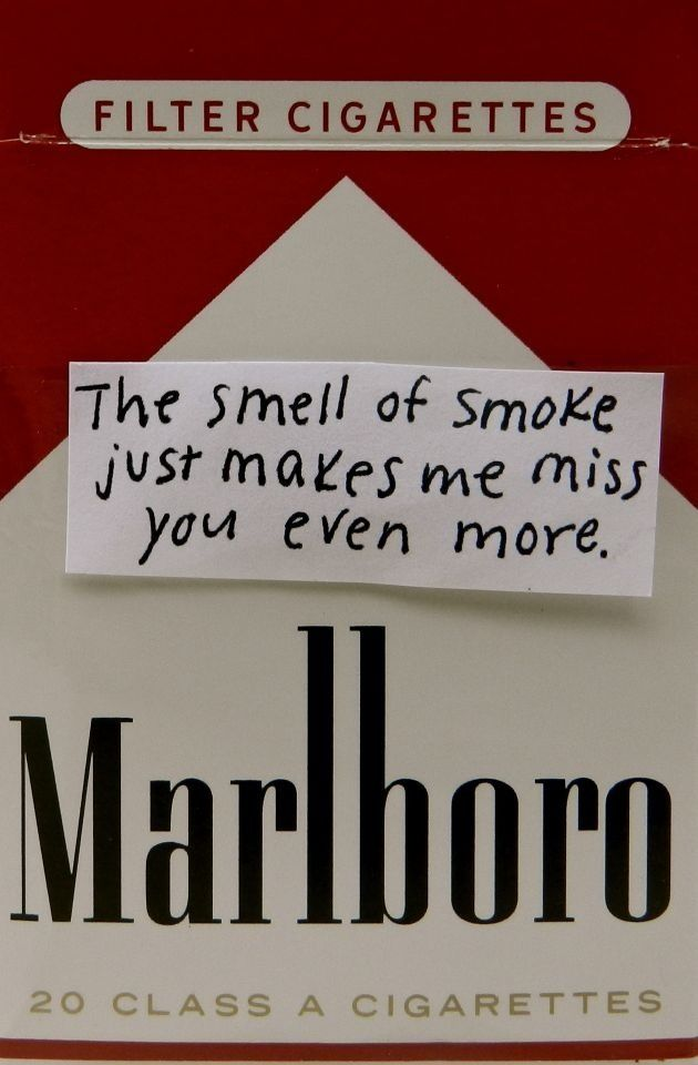 smell quotes quotesgram
