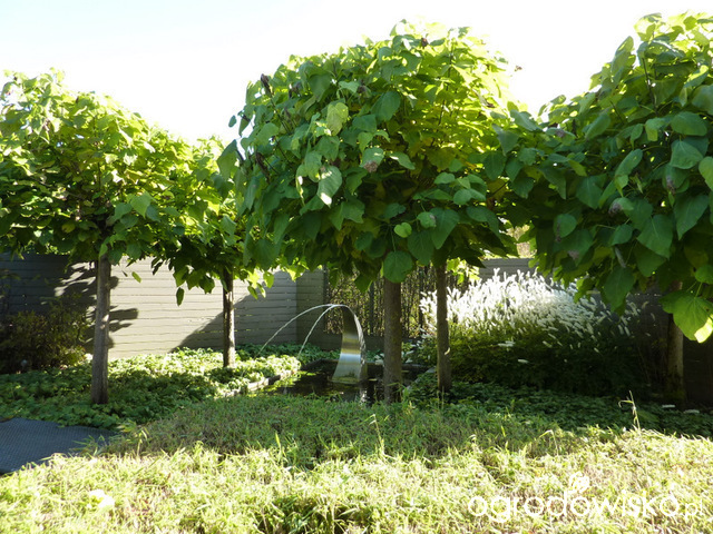 quotes the bean trees about characterization Find all available study guides and summaries for bean trees by offer bean trees chapter summaries, quotes, and the story and characters along.