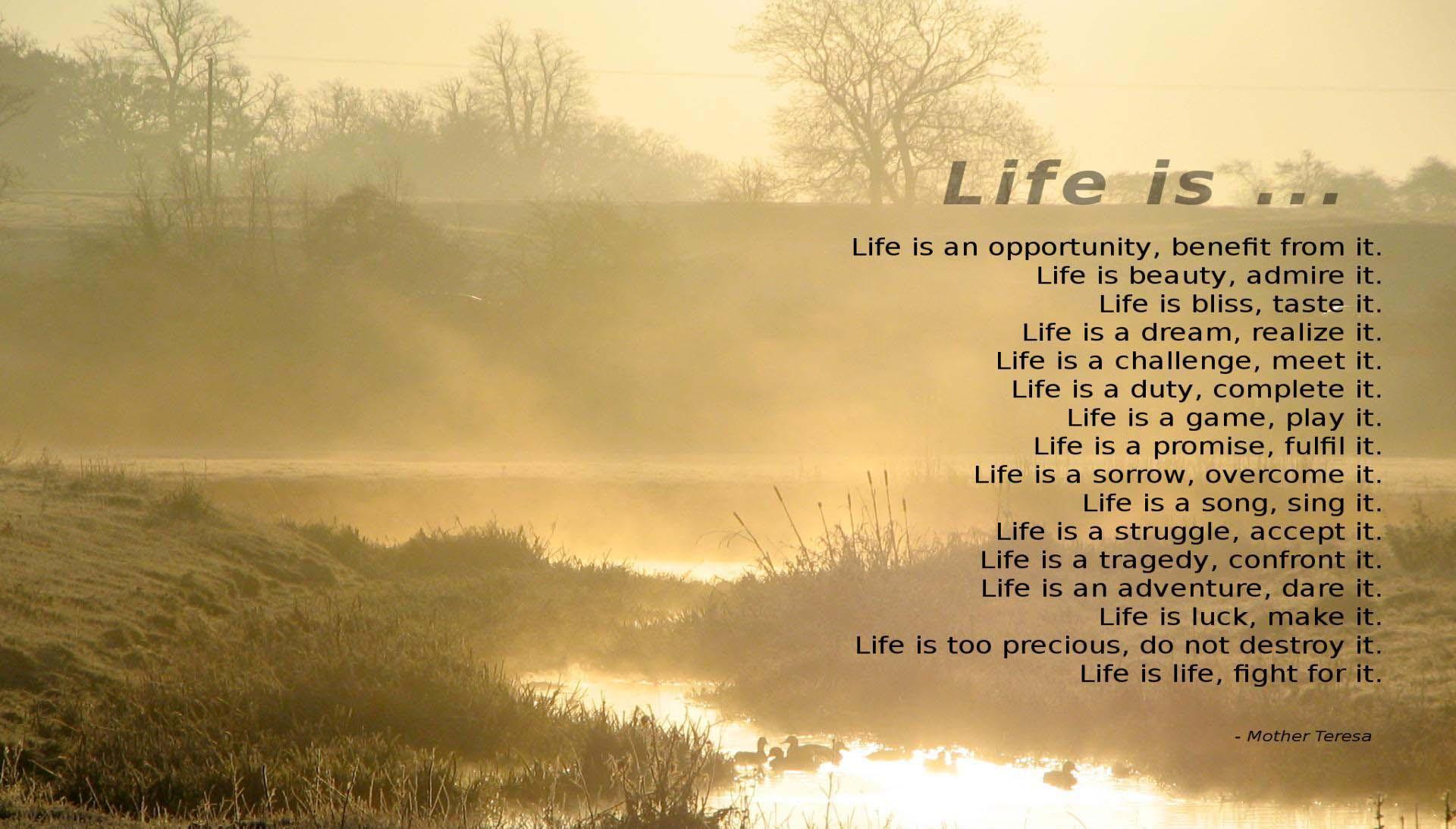 beach mother teresa quotes inspirational quotesgram