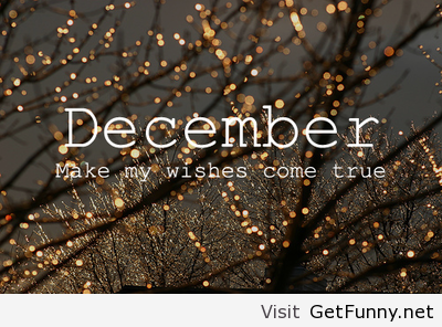 Funny December Quotes. QuotesGram