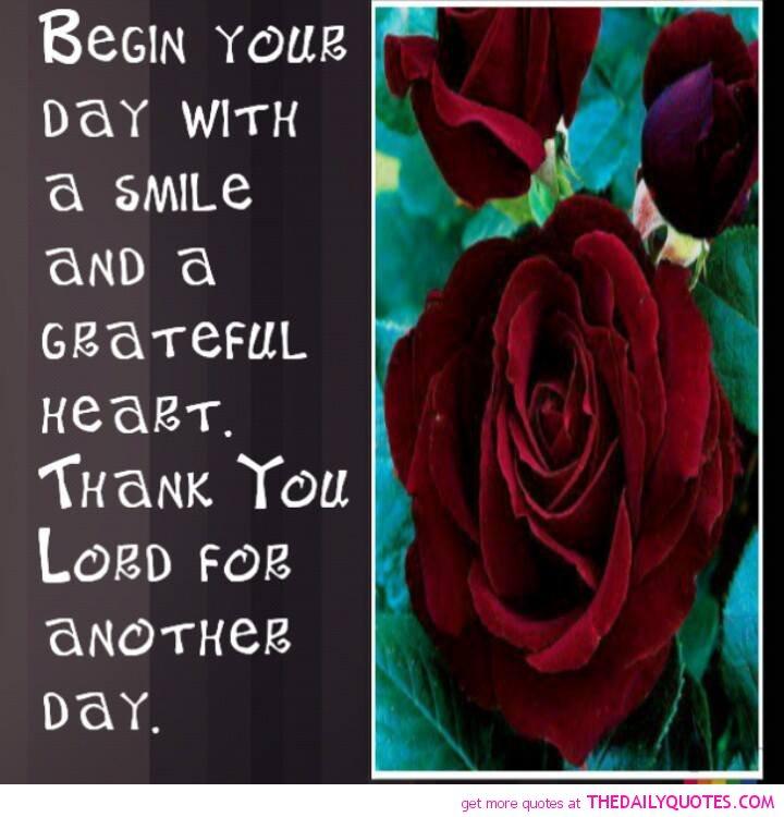 Great Gratitude Quotes: Famous Quotes Gratitude. QuotesGram