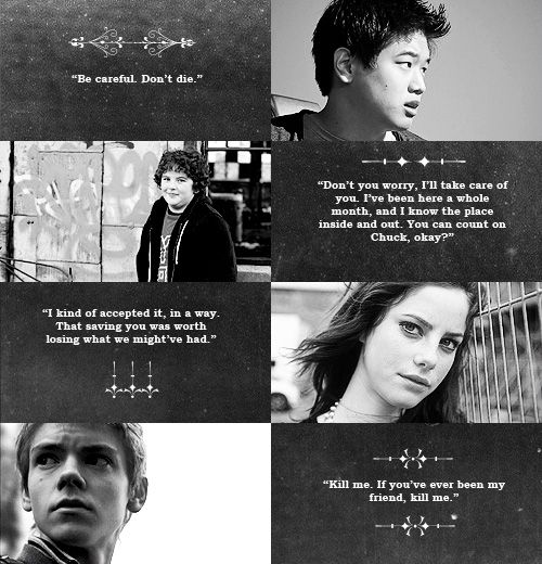 The Death Cure Quotes Quotesgram: Thomas From Maze Runner Quotes. QuotesGram