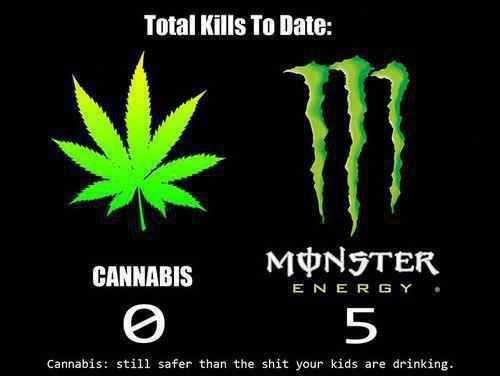 Assholes Drink Monster Energy Meme
