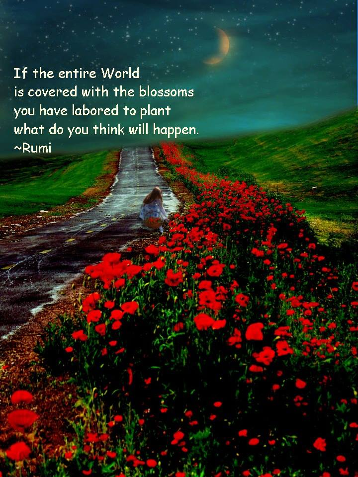 Rumi Quotes Of The Day. QuotesGram