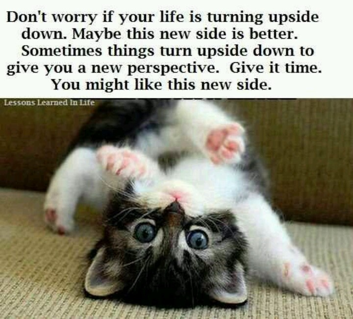 Upside Down Picture Quotes: Turn It Upside Down Quotes. QuotesGram