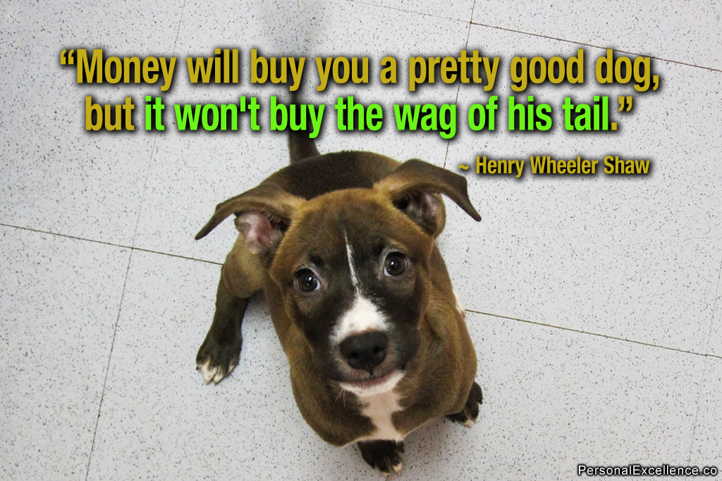 Make Money From Dogs