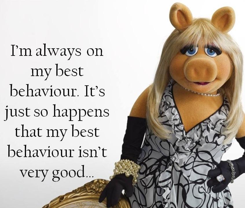 Muppet Quotes Life Quotesgram: Miss Piggy Quotes. QuotesGram