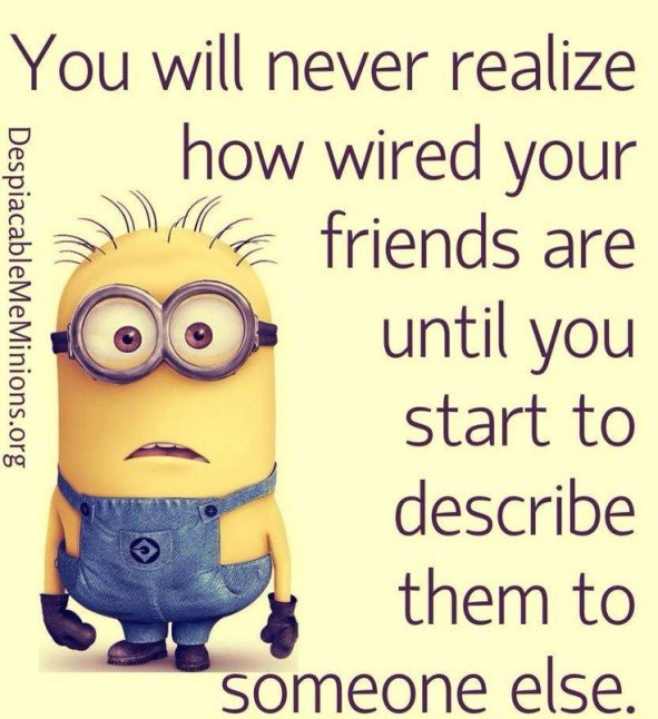 Friends Forever Funny Quotes: Minion Quotes Friends Forever. QuotesGram