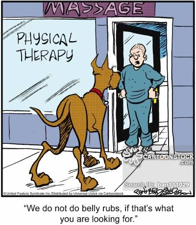 Physical Therapy Humor Quotes Quotesgram