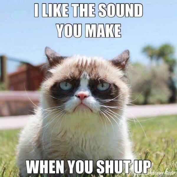 Funny Quotes Grumpy Cat. QuotesGram