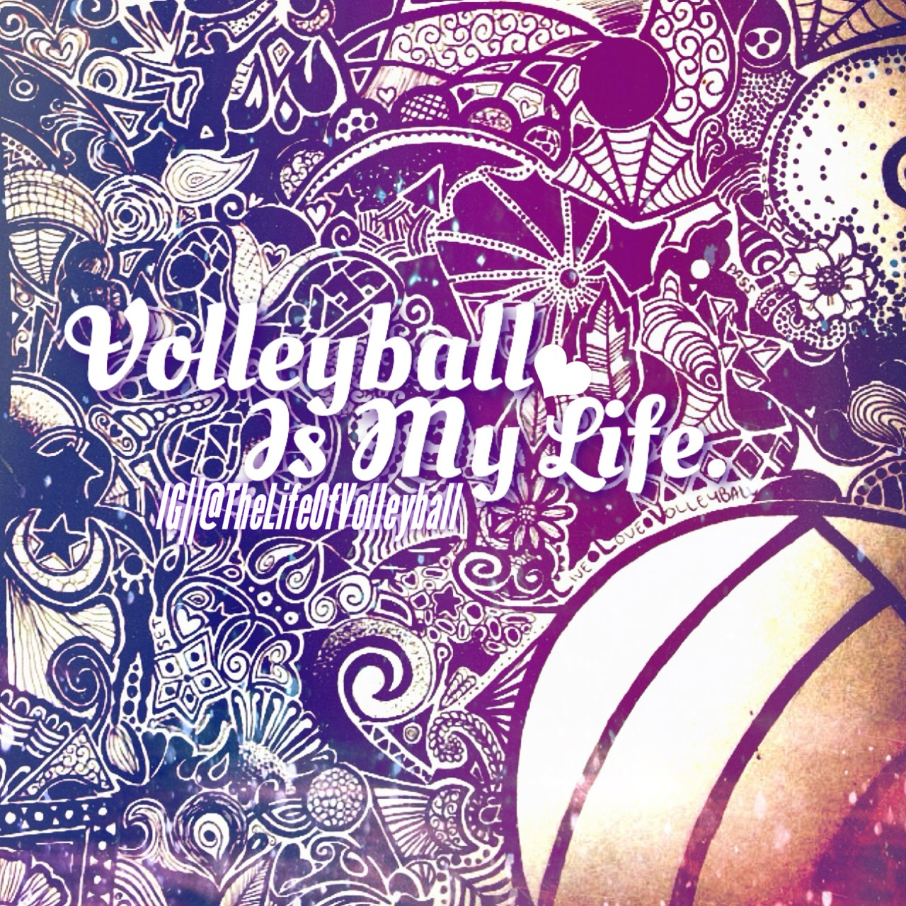 i love volleyball essay Sports are an extremely beneficial activity for children in america they promote  a healthy lifestyle, teach positive life lessons, and are a huge.