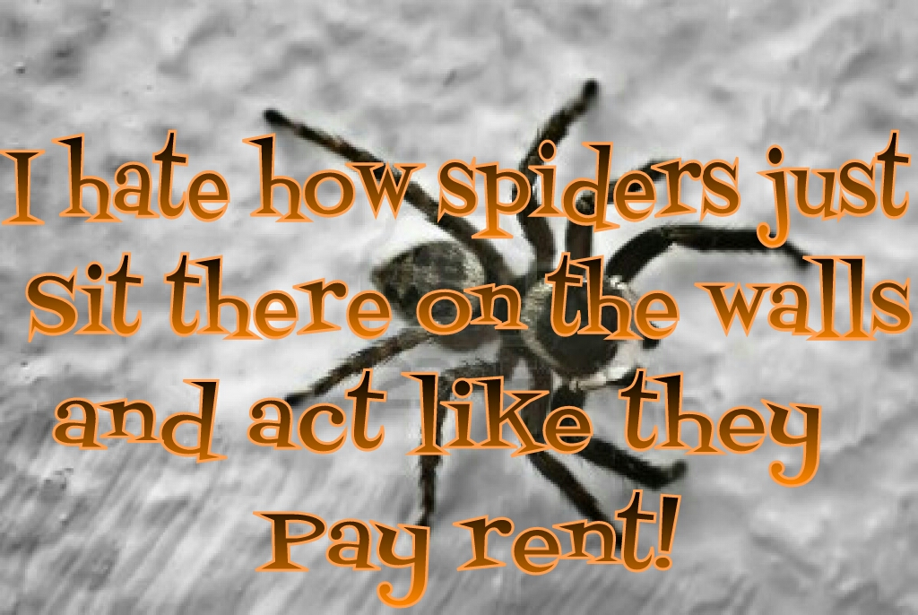 Spider Quotes And Sayings. QuotesGram