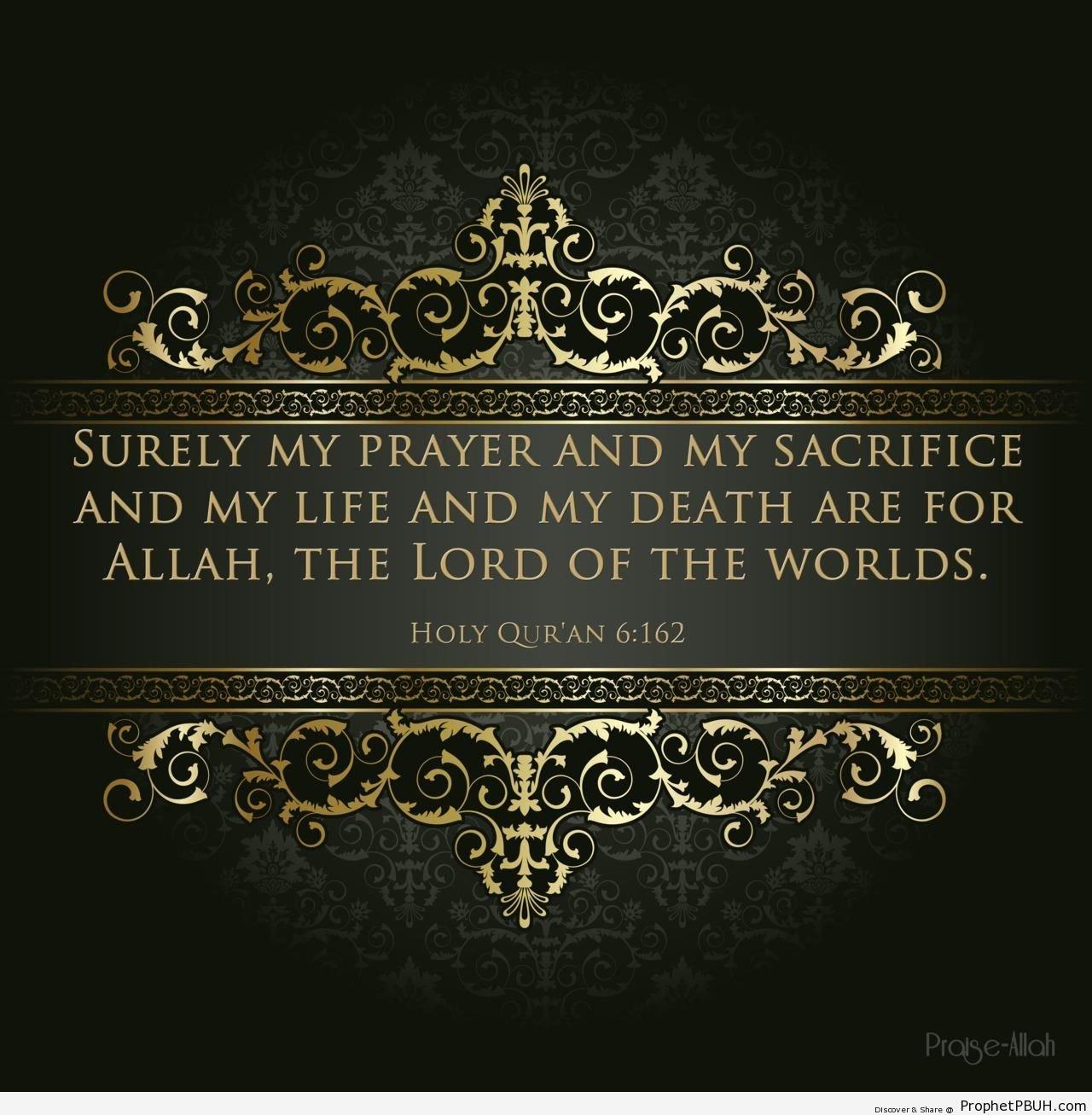 Quotes Quran: Quran Quotes About Peace. QuotesGram