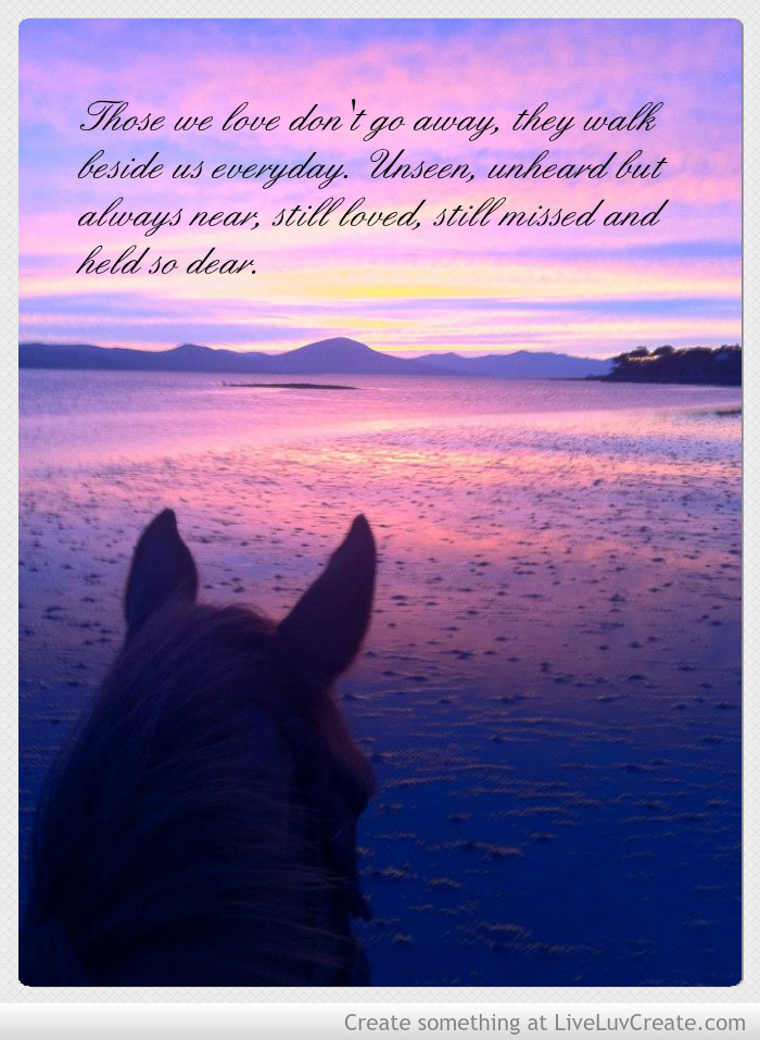 Horses Quotes And Saying At Sunset Quotesgram