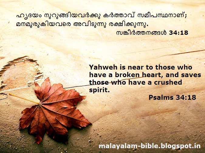 daily psalms scripture quotes quotesgram