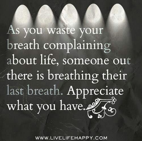 Appreciate Life Quotes: Quotes About Appreciating What You Have. QuotesGram