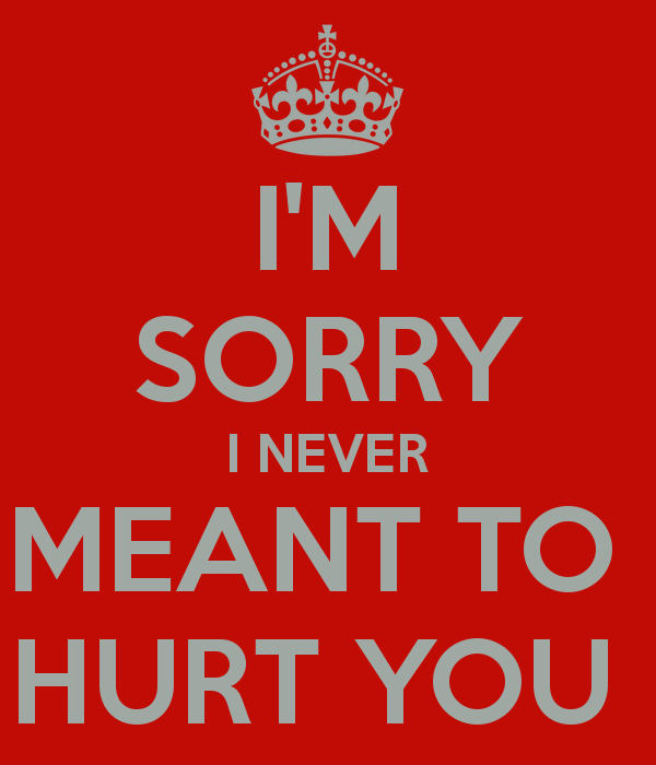 Im Sorry I Hurt You Quotes. QuotesGram