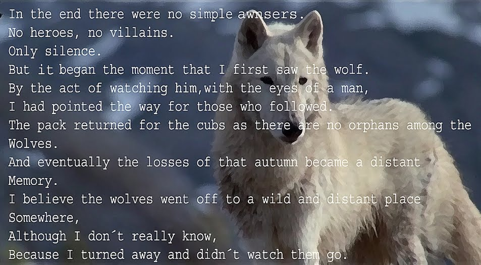 Crying Wolf Quotes Quotesgram