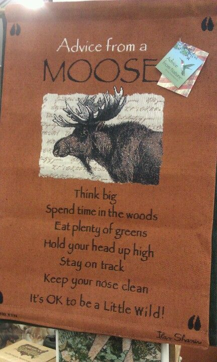 Moose Quotes And Sayings  Quotesgram