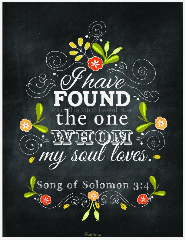 Book Of Solomon Love Quotes Quotesgram