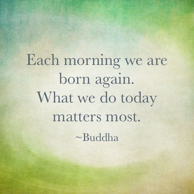 Morning Buddha Quotes Quotesgram. Movie Quotes Under Siege. Life Quotes Growing Up. Harry Potter Quote Judge A Man. Marriage Quotes On Love. Song Quotes Drake 2016. Good Quotes Yahoo. Friday Uplifting Quotes. Instagram Quotes Life