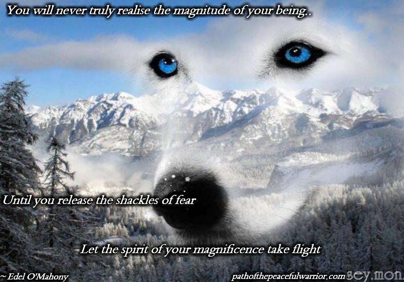 spiritual warrior quotes quotesgram