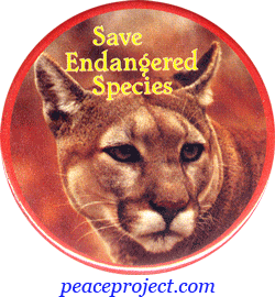 save the endangered animals essay