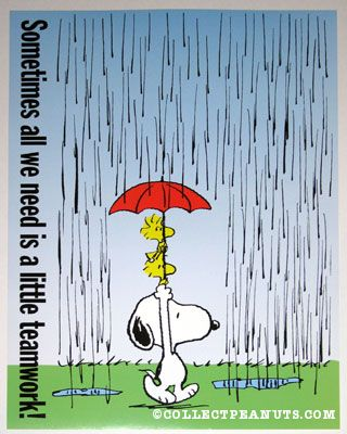 1000  images about snoopy on Pinterest