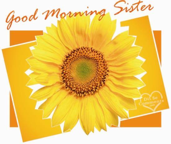 Good Morning Sister Greetings : Good morning sister quotes quotesgram